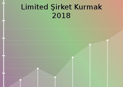 Limited Şirketi Kurmak Süreci Ve Maliyeti 2018