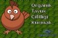 Organik Tavuk Çiftliği Kurmak