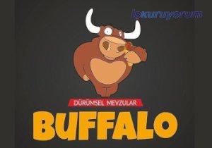 Buffalo Buddy Fast Food Bayilik