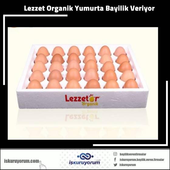organik yumurta bayilik