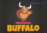 Buffalo Buddy Fast Food Bayilik bayilik /franchise
