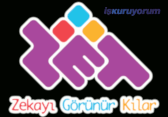 ZET Zeka Oyunla