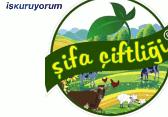 Şifa Çiftliği Yumurta Bay bayilik /franchise